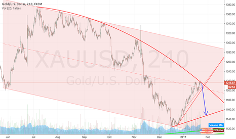 XAUUSD: Short Gold until the end of January 2017