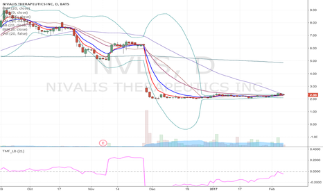 NVLS: NVLS - watching for Breakout