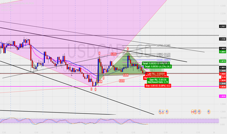 USDCAD: Chypher