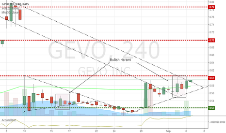 GEVO: another pennant breakout