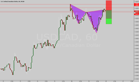USDCAD: At Market Bear Cypher