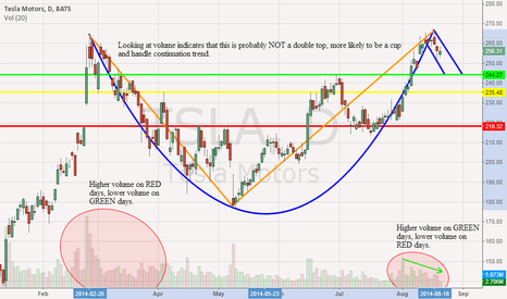 TSLA: $TSLA looks more like a cup and handle, not a double top
