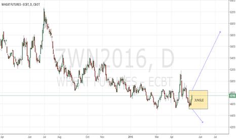 ZWN2016: Wheat CBoT N16
