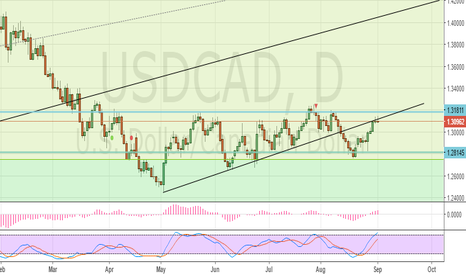 USDCAD: Sell this USDCAD