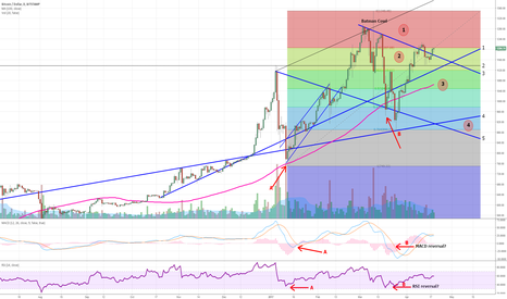 BTCUSD: Bitcoin to consolidate more towards the 100 day moving average?