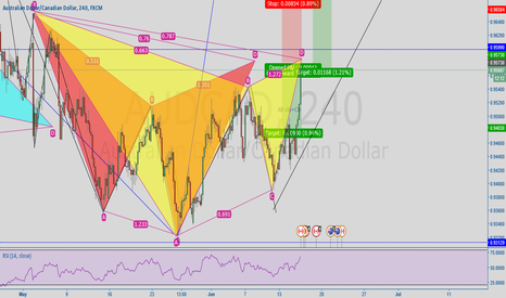 AUDCAD: Shark & Gartley Perfectly Line Up on the same D point
