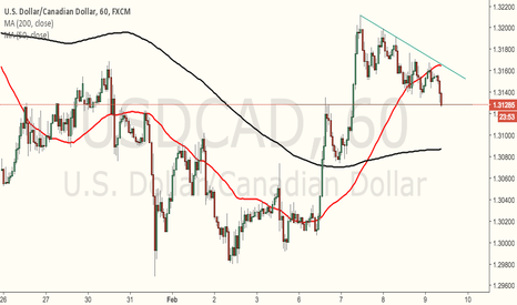 USDCAD: Bullish flag??