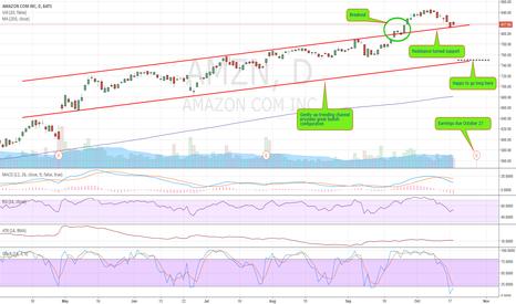 AMZN: Amazon in the green, deserves earnings exposure.