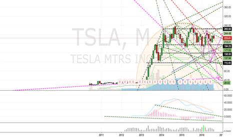 TSLA: Another TESLA in flames