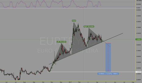 EURTRY: EURTRY head & shoulder
