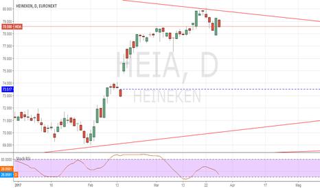 HEIA: Heineken, mind the gap