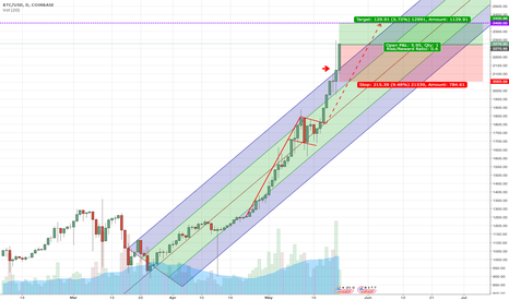 BTCUSD: Bitcoin rising too high too fast??