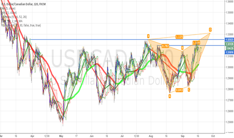 USDCAD: beautiful batterfly