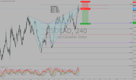 USDCAD: USDCAD Short  for Bearish Butterfly