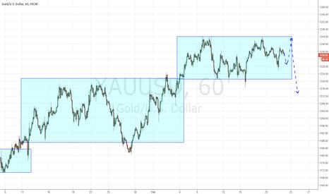XAUUSD: Gold new maximum after it short
