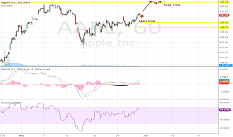 AAPL: Bullish Long Term