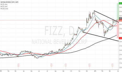 FIZZ: Good opportunity to buy some shares of National Beverage