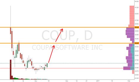 COUP: COUP  -long