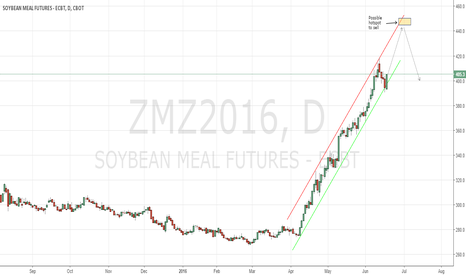 ZMZ2016: Soybeanmeal CBoT waiting for a short play opportunity