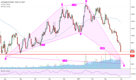 ZSN2017: Potential Bullish Shark for Beans