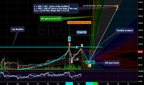 BTCUSD: BTC: PERFECT B REACHED, GOING TO C.