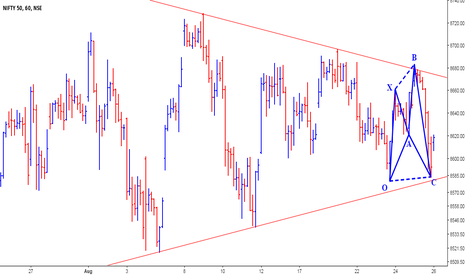 NIFTY: Nifty - Bullish Shark