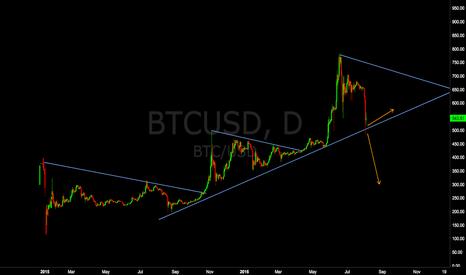 BTCUSD: Bitcoin Price Collapse