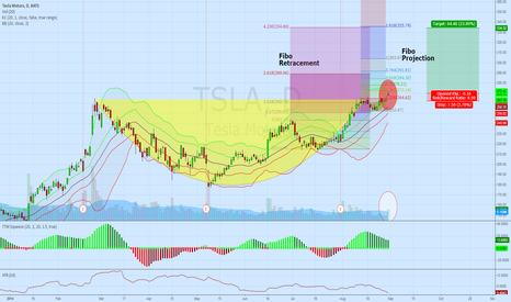 TSLA: Potential Cup and Handle at TSLA
