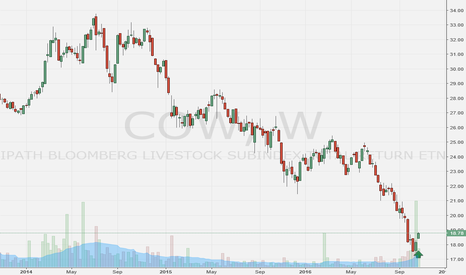 COW: I like a buy on COW at this level.