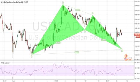USDCAD: USDCAD Bat Pattern