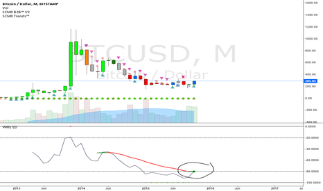 BTCUSD: The Bubble Begins