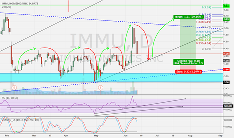 IMMU: Amazing Risk Reward Set Up