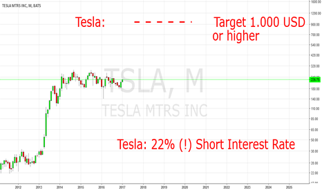TSLA: Tesla Will Rise At Least To 1.000 USD