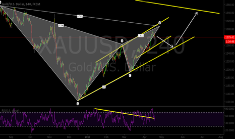 XAUUSD: Gold is looking to bounce back to around 1240-50