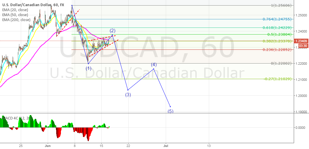 USDCAD: Rising wedge formed on corrective wave (2)