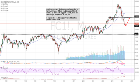 FC1!: Long term view of cattle
