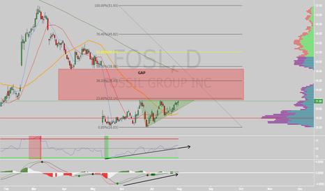 FOSL: $FOSL gap fill?