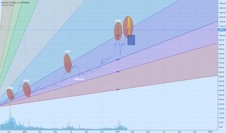 BTCUSD: Bitcoin a bit ahead of itself