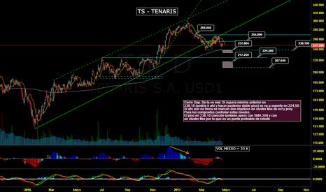 TS: TS - Tenaris - Soportes y Fibos de control
