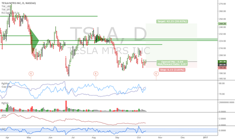 TSLA: TSLA: SCTY predicts higher prices?