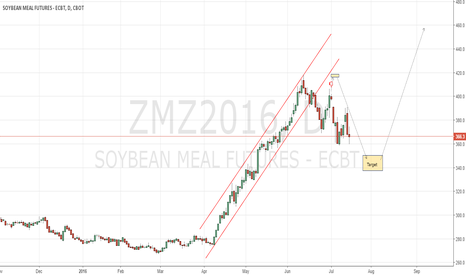 ZMZ2016: CBoT soyameal waiting for the long entry level