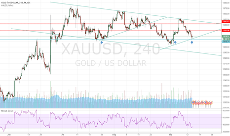 XAUUSD: XAUUSD  Long  from support @1313