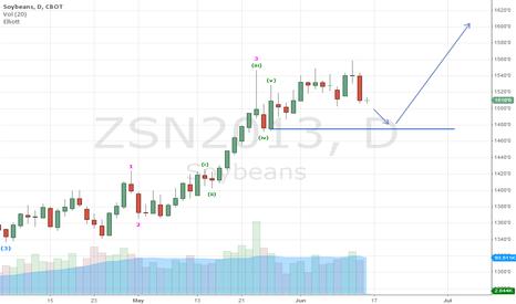ZSN2013: Short 1480