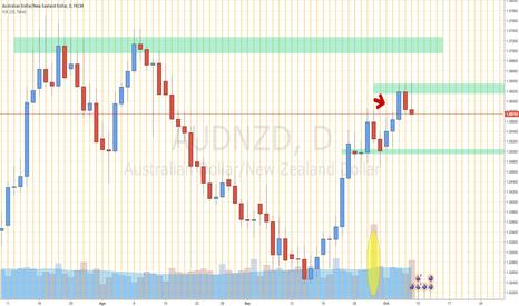 AUDNZD: Políticas monetarias del Banco de reservas de NZD