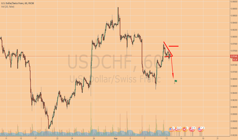 USDCHF: If It Goes Up I'll Quit Trading