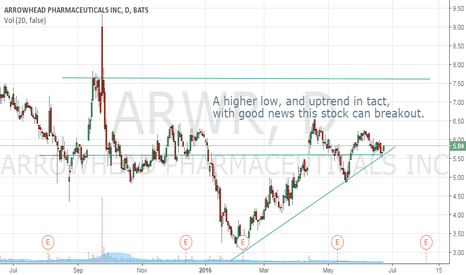 ARWR: Higher Low possible breakout