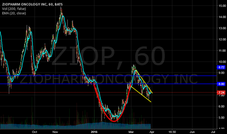 ZIOP: Cup and Handle