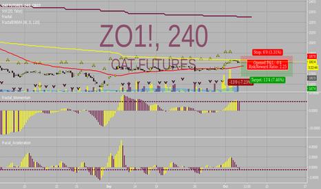 ZO1!: Short Opportunity