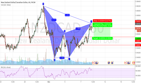 NZDCAD: a little bearish gartley
