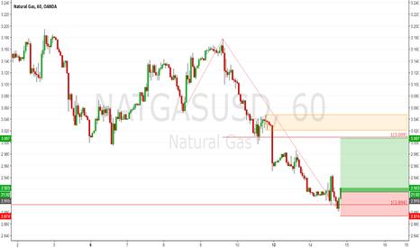 NATGASUSD: Natural Gas (NATGAS): At The Support